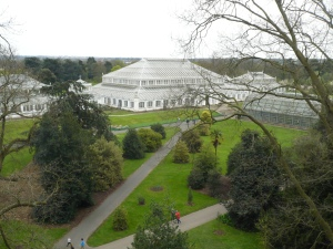 Treetop Walk at Kew